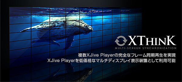 4K UHD XJive Player XThink オプション